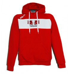 RCW Official Hoody